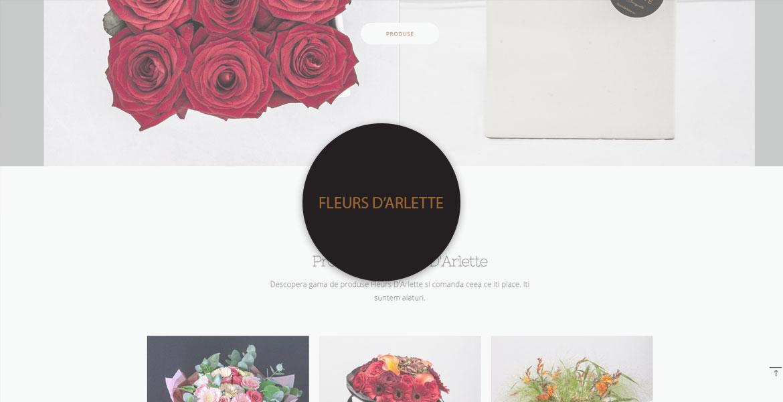 Fleurs D'Arlette